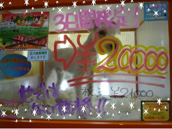 script_magicalmaker,http://www.magicalmaker.com/js/ameblo.js.php?upwh=2095458-1260517594-340-255