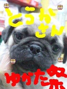 広島WANのブログ-DVC00741.JPG
