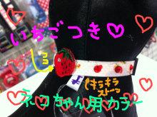 広島WANのブログ