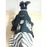 PET SUPER 1WAN 池袋店さんのブログ-121228_151106_ed.jpg