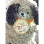 PET SUPER 1WAN 池袋店さんのブログ-121228_151328_ed.jpg