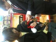 ペットスーパーWAN 岡山店-091225_1355471.jpg