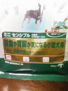 ペットスーパーWAN 岡山店-100428_2229~01.jpg
