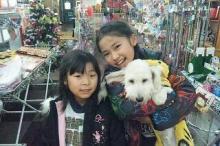 ペットスーパーWAN 岡山店-20111223_205141.jpg