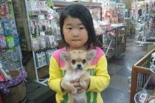 ペットスーパーWAN 岡山店-20120424_002119.jpg