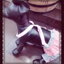 ペットスーパーWAN 岡山店-Camely_20130326_191040.jpg