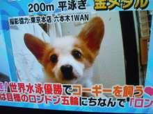 六本木WANのブログ-DVC00626.JPG